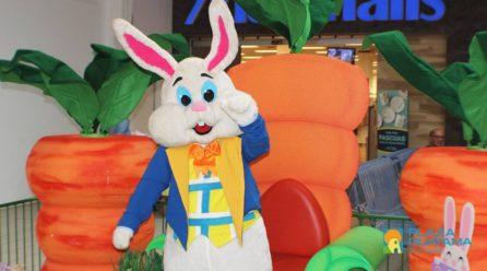 Divertida Celebración de Pascuas
